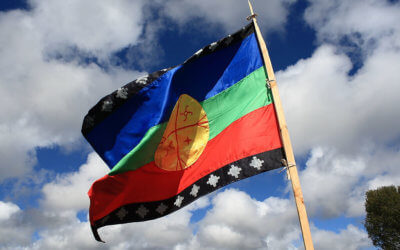 The Mapuche in Chile – Indigenous Struggle as Revolutionary Ferment