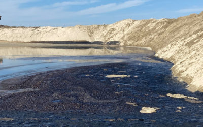 The Orange County Oil Spill and Human Alienation from Nature